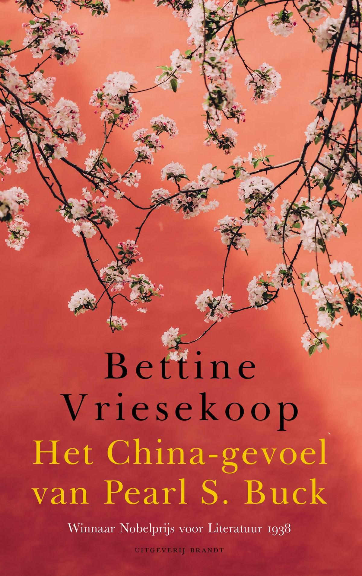 boekomslag-Bettine-Vriesekoop-Het-China-gevoel-van-Pearl-S-Buck